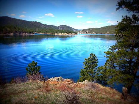 Roadside Lake by Carrie Putz