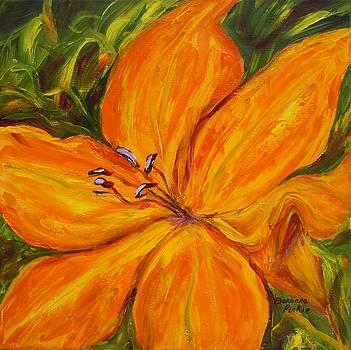Roadside Lily by Barbara Pirkle