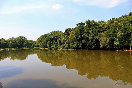 Roanoke River Reflections by Carolyn Ricks