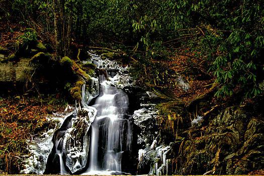 Matthew Winn - Roaring Fork Falls