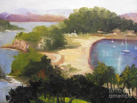 Robertson Island by Barbara Haviland