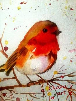 Robin by Charu Jain