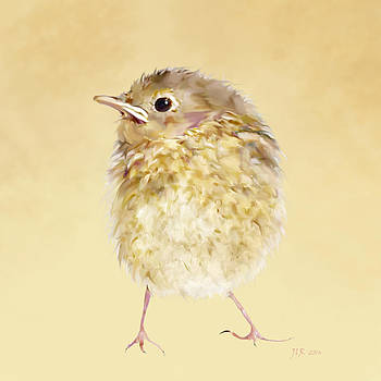Bamalam  Photography - Robin Chick