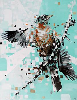 Robin by Jeremy Scott