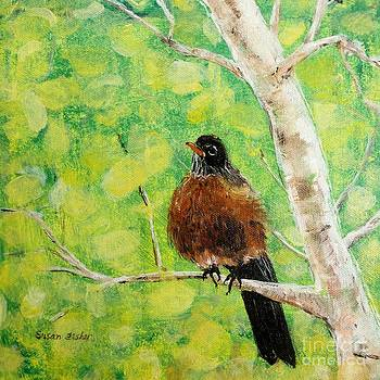 Robin on Aspen by Susan Fisher
