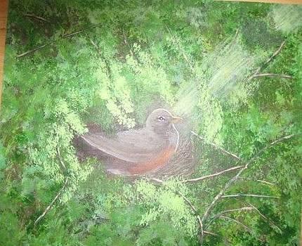 Robin on her nest by Lorraine Bradford