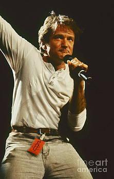 Robin Williams by David Plastik