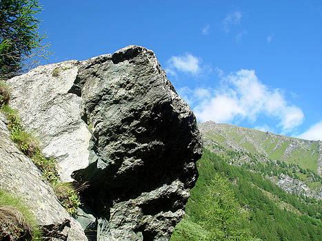 Roccia In Montagna by Niki Mastromonaco