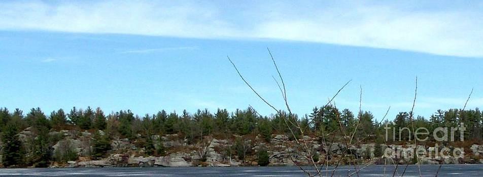 Gail Matthews - Rock and Tree Island