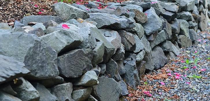 Rock Walls by Emelyn McKitrick