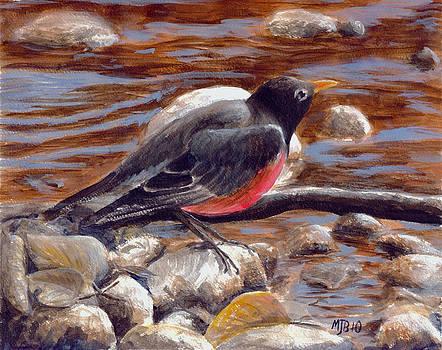 Rockin' Robin by Michael Beckett