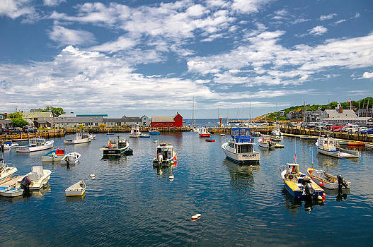 Rockport Harbor by Liz Mackney