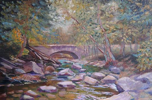 Rocks in the creek by Efim Melnik