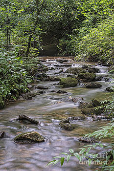 Rocks in the Stream by Louise St Romain