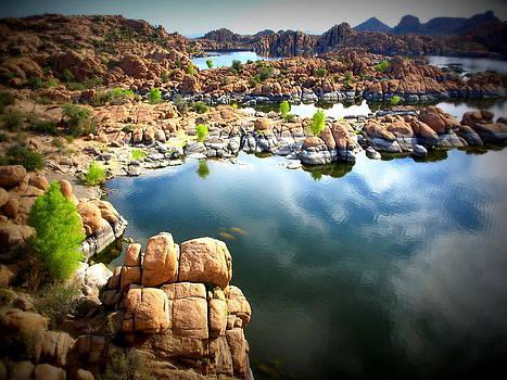 Rocks of Watson Lake by Denny Ragan