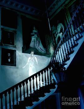 Rockwood stairwell  by Tom Straub