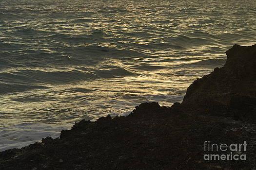 Rocky Beach Mexico by Wayne Pellenberg