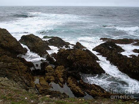 Danielle Groenen - Rocky California Coastline