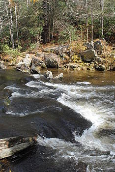 Rocky Creek by Misty Stach