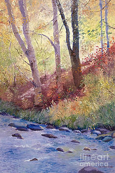 Rocky Creek by Patricia Huff