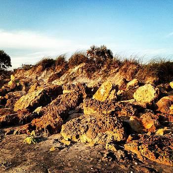 Rocky Dunes by Justine Prato