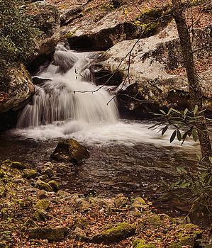 Heather Applegate - Rocky Fork Falls