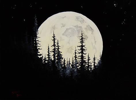 Chris Steele - Rocky Mountain Moon