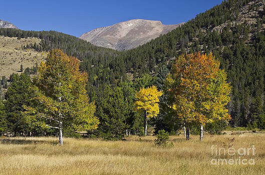 Rocky Mountain National Park Colorado - 8704-1 by Jerry Owens