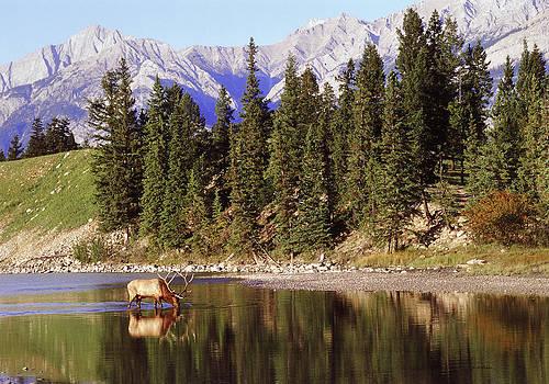 Scott Wheeler - Rocky Mountain Reflections