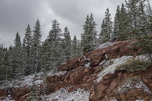 Rocky Mountain Snow by Dawn Morrow
