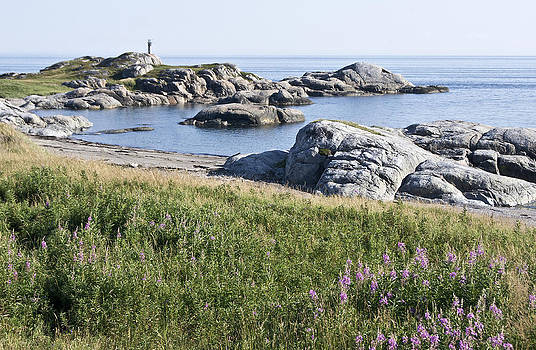 Arkady Kunysz - Rocky shore