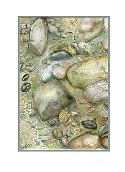 Rocky Shore Note Card by Joan A Hamilton