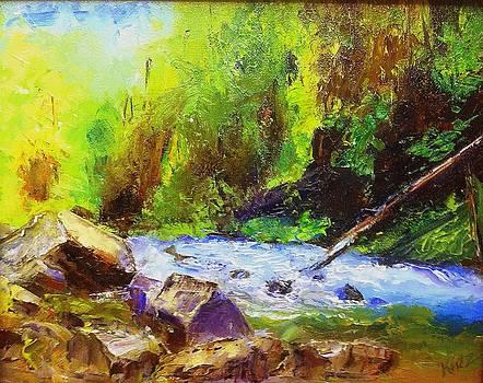 Rocky Stream by Gail Kirtz