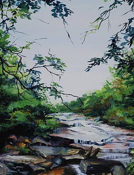 Rocky Stream by Sharon Sorrels
