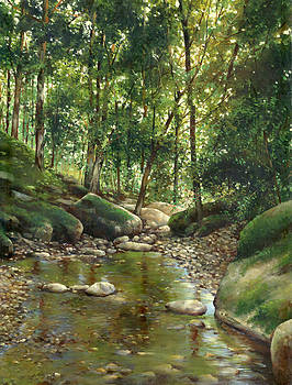 Rocky stream by Victor Mordasov