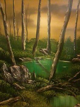 Rocky Swampland by Ricky Haug