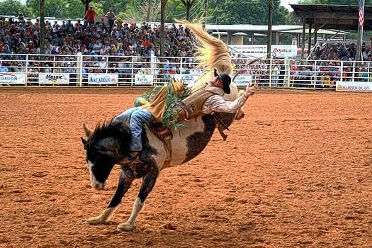 Rodeo Cowboy by Bob Jackson