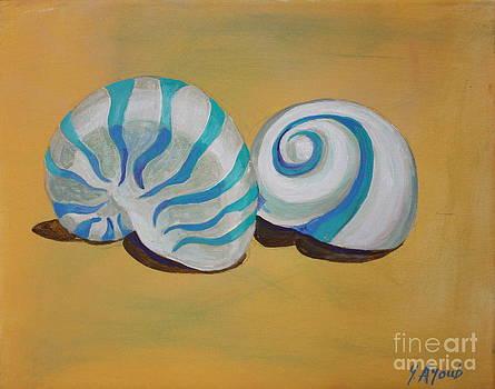 Rodios Shells by Yvonne Ayoub