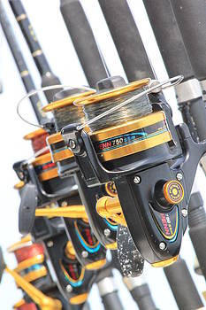 Rods and Reels by Deanna King