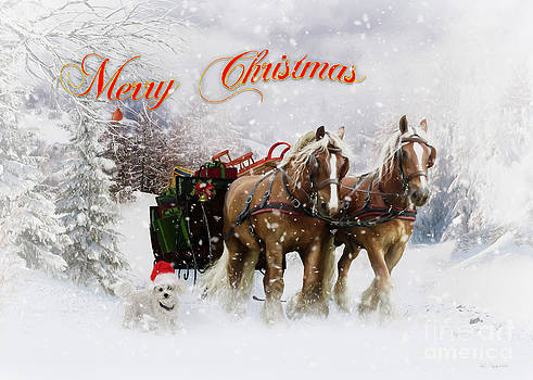 Merry Christmas by Shanina Conway