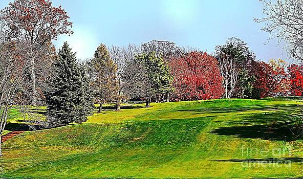 Rolling Green Hills And Fall Foliage by Judy Palkimas