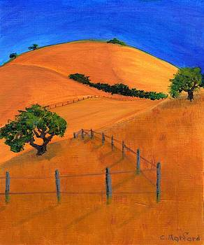 Rolling Hills 1 by Charles Morford