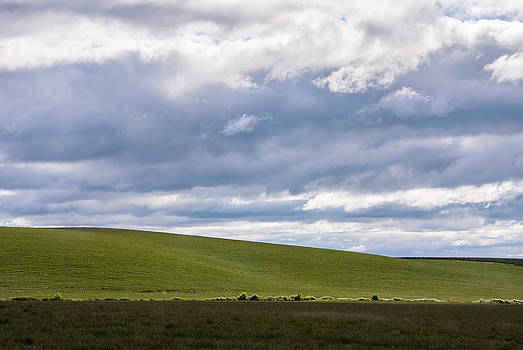 Rolling Hills by Craig Pifer