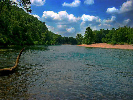 Rolling on the River by Patricia Erwin