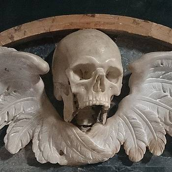 #roma #italy #skull #wings by Francisco  Quiroz