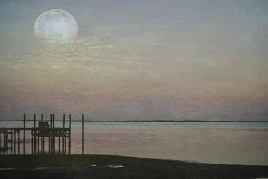 Judy Hall-Folde - Romancing the Moon