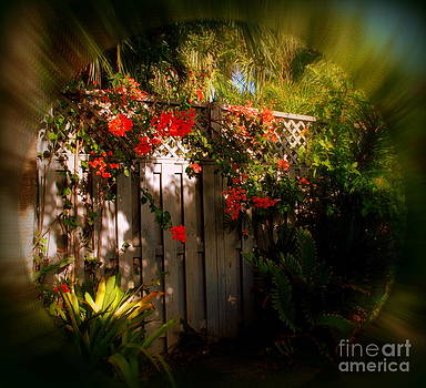 Susanne Van Hulst - Romantic Hideaway in Key West
