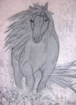 Jessie Art - Romeo The White Stallion