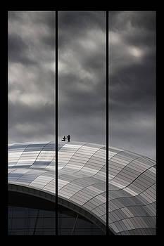 David Pringle - Roof of the Sage