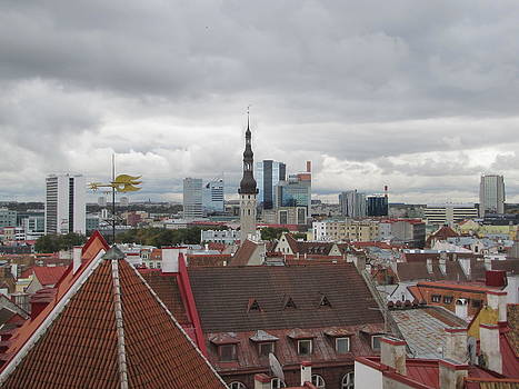 Roofs of Tallinn by Barbara Chachibaya